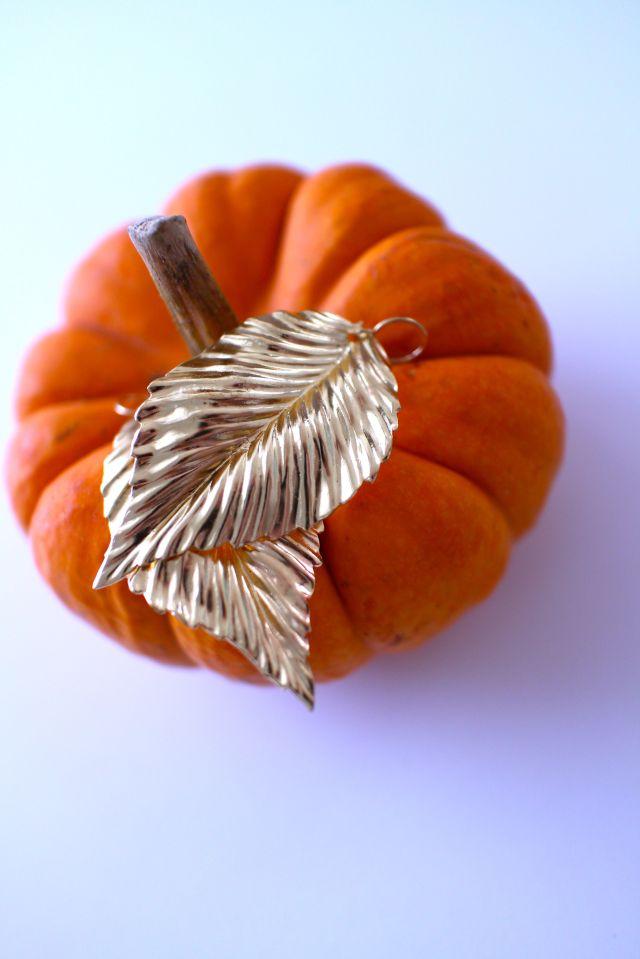 SP pumpkin leaf